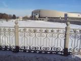 Коломна. Конькобежный центр. 2010-2011 гг.
