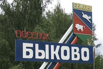 Подмосковье Быково